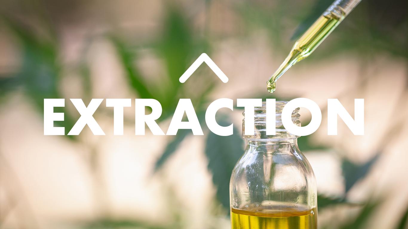 CBD extracton methods