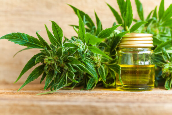 cbd and mct oil